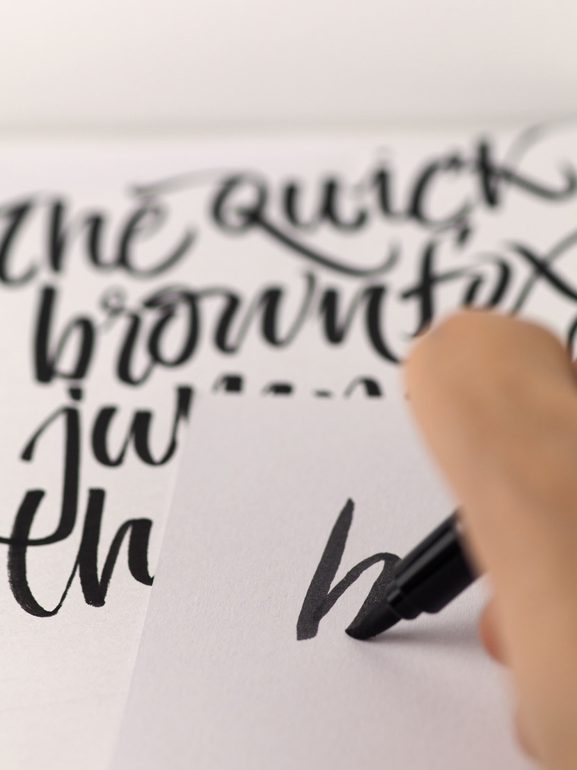 Phoenix-pad-lettering-detail-1-829pxW