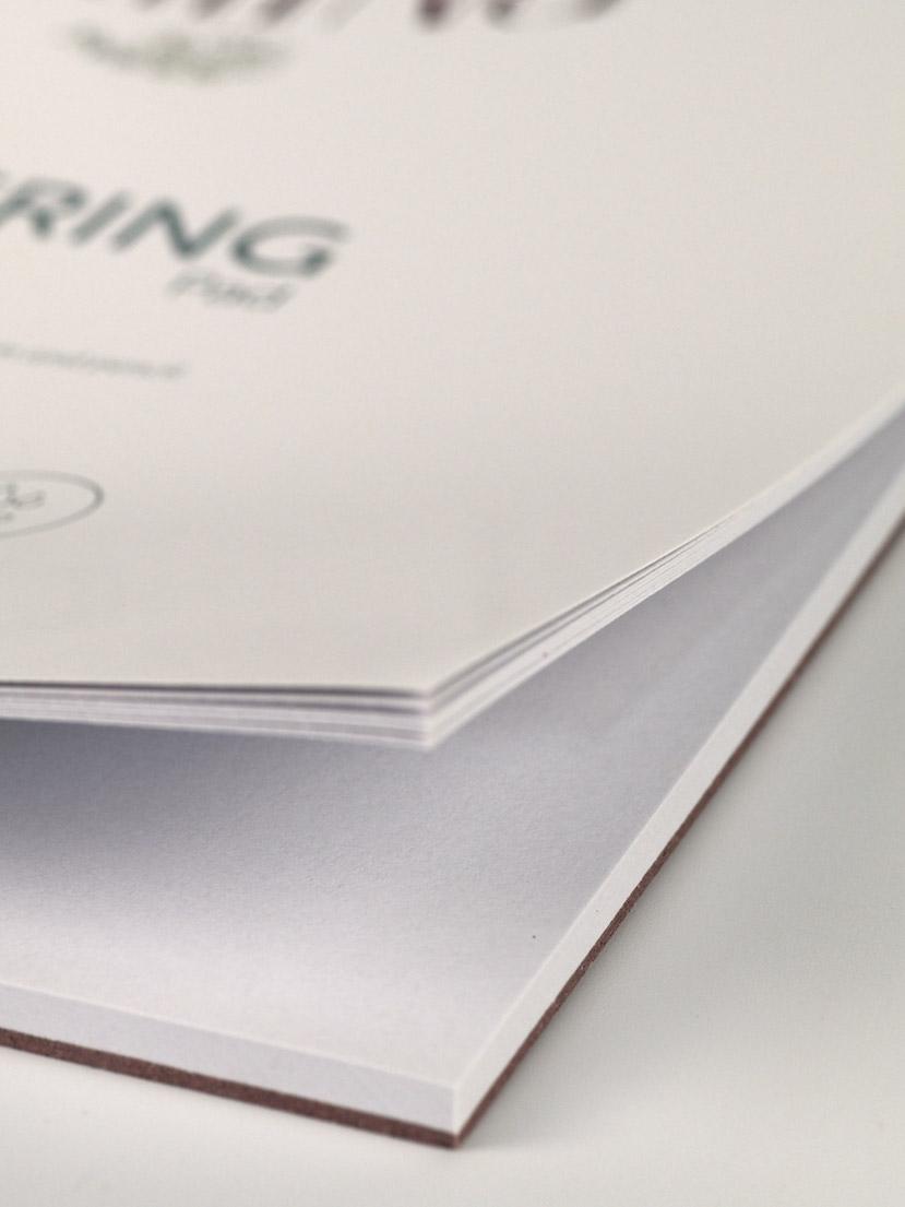 Phoenix-pad-lettering-detail-2-829pxW